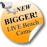 Live Beach Surf Cams!